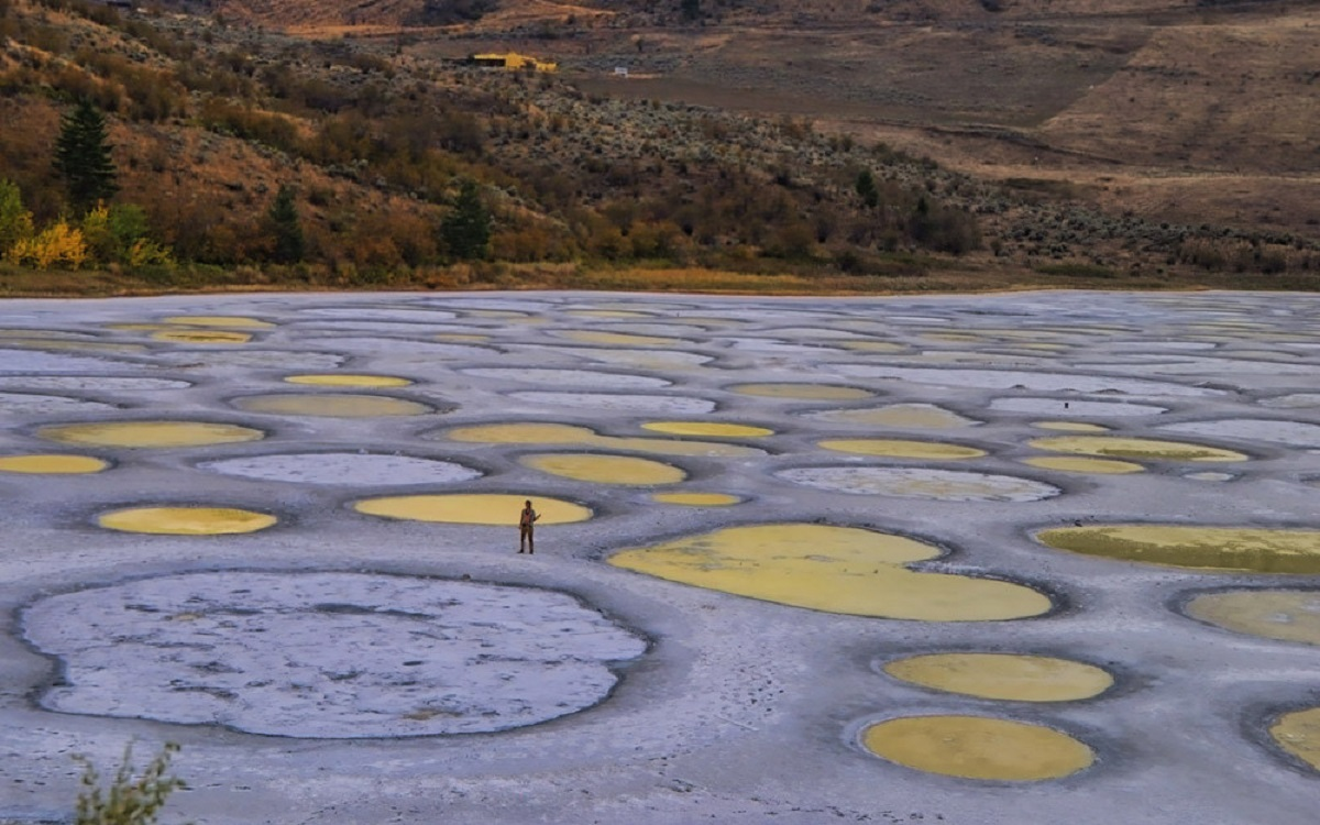 BC has an abundance of hidden gems that will make anyone stop dead in their tracks. Another magical spot you must visit is this mineral-rich Spotted Lake.