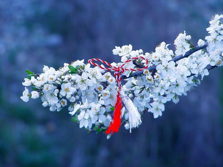 Cu flori fragede și șnur alb-roș' ne întâmpină 1 Martie. VRA vă urează o primăvară plină de bucurie!